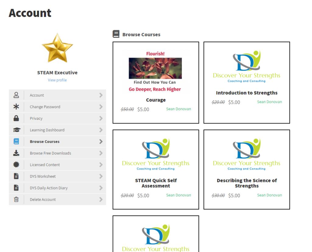 STEAM Executive Account Customisation